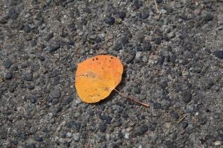 2012-10-07 Death Valley - 17