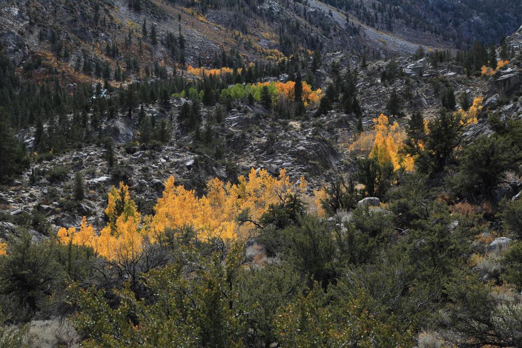 2012-10-07 Death Valley - 9