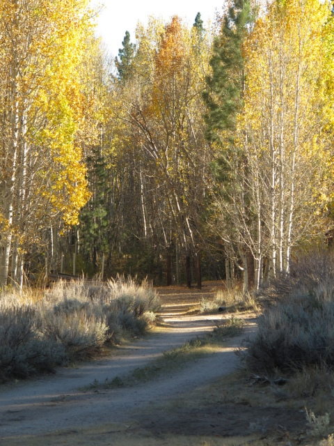 2012_Fall Colors Ride_013