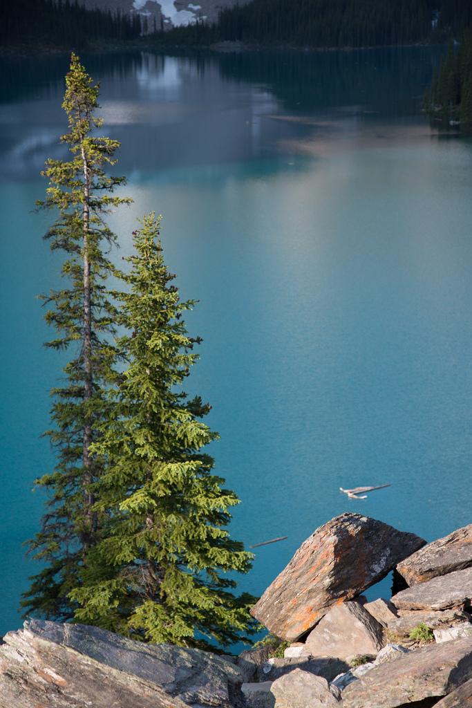 Banff National Park 443