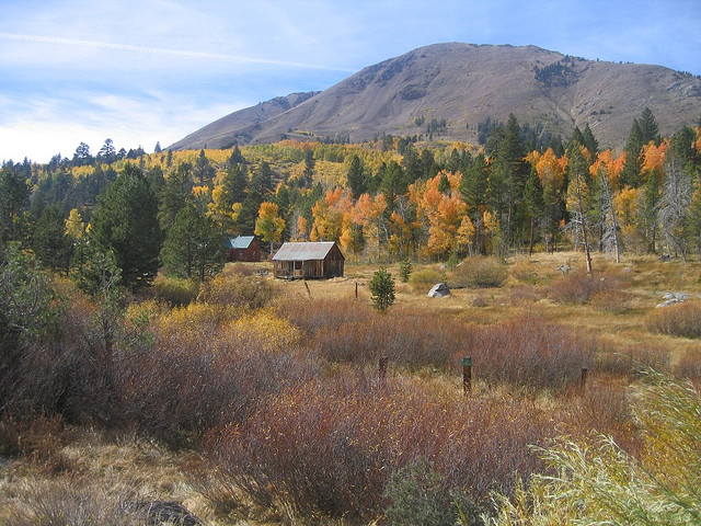 Highway 88 - Fall 2006 - 15