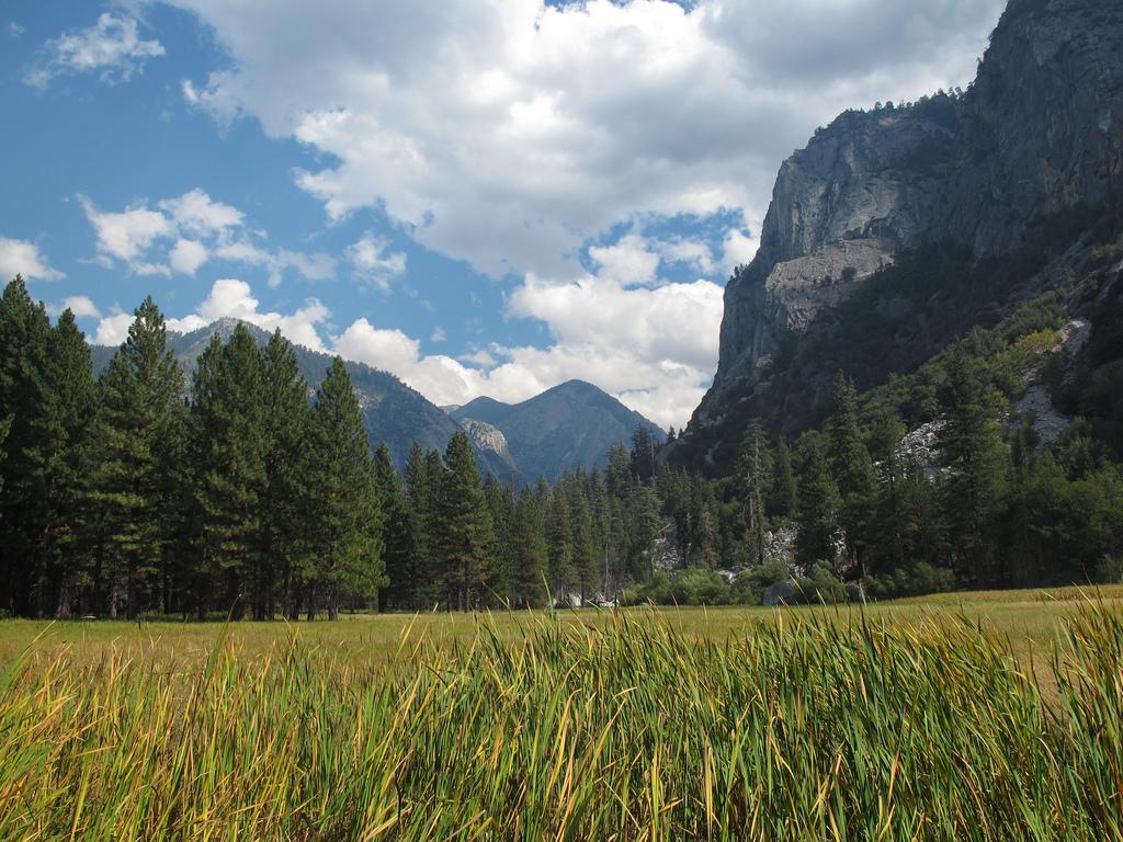 IMG_3732,  zumwalt meadows