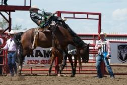 Panoka Rodeo 1006