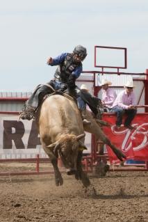 Panoka Rodeo 234