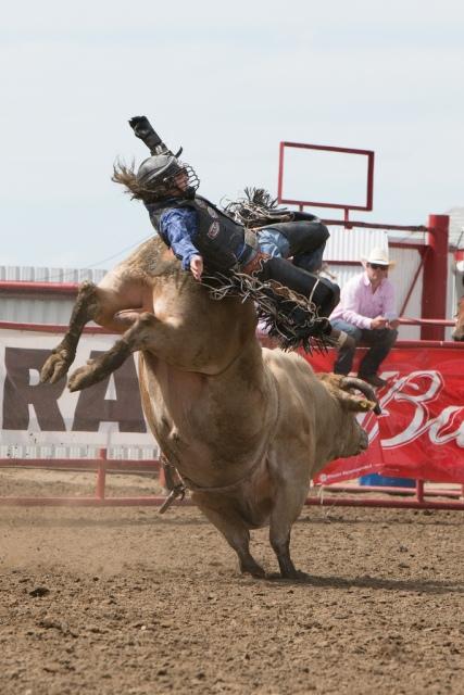 Panoka Rodeo 236