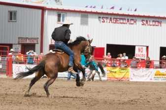 Panoka Rodeo 270