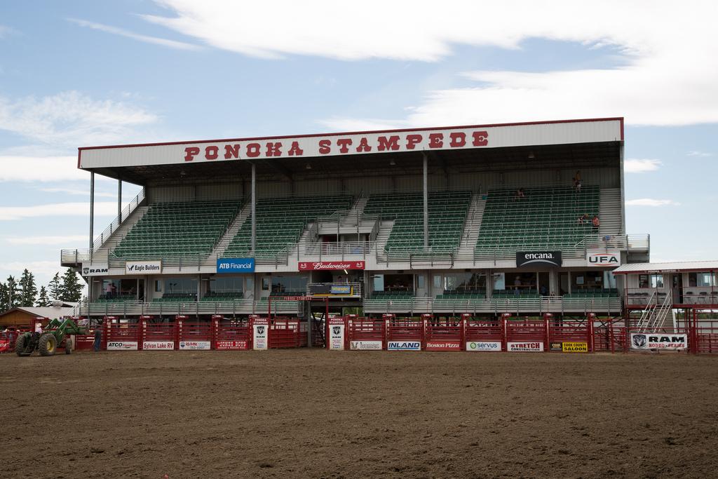 Panoka Rodeo 301