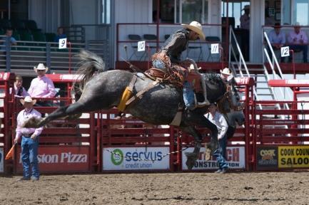 Panoka Rodeo 409