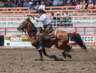 Panoka Rodeo 494