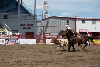 Panoka Rodeo 510