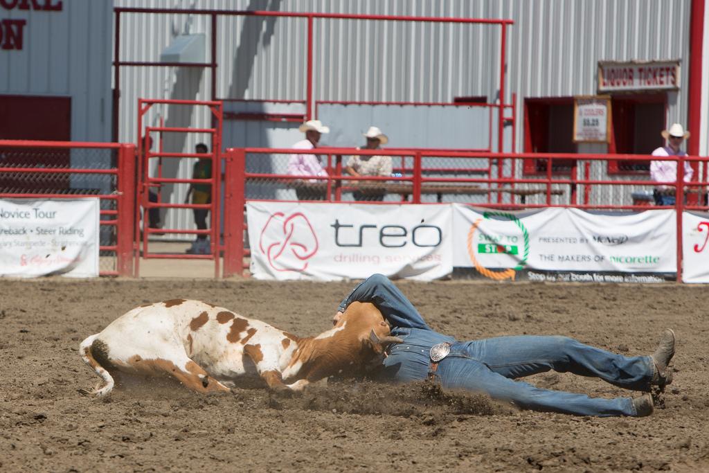 Panoka Rodeo 578
