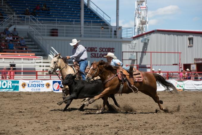 Panoka Rodeo 589