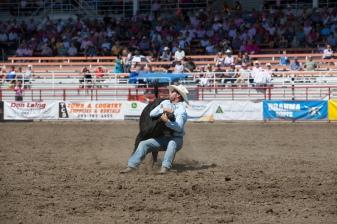Panoka Rodeo 596