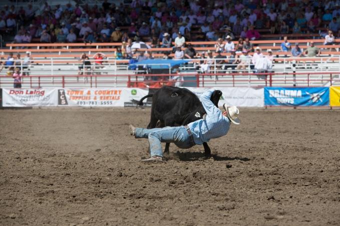 Panoka Rodeo 598