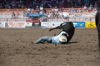 Panoka Rodeo 600
