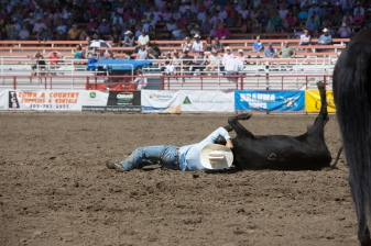 Panoka Rodeo 601