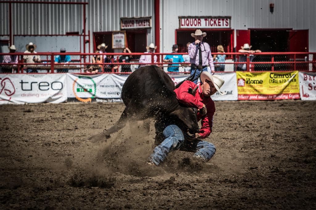 Panoka Rodeo 606