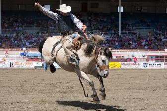 Panoka Rodeo 812
