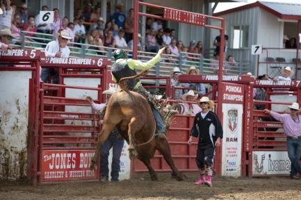 Panoka Rodeo 884