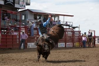 Panoka Rodeo 909