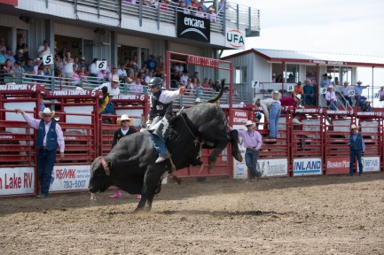 Panoka Rodeo 928