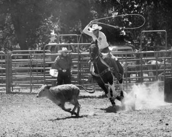 Sacramento_Rodeo (16 of 40)