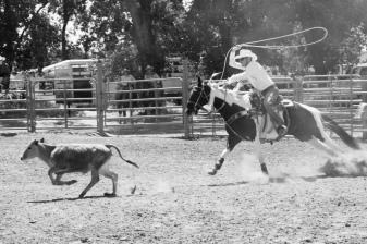 Sacramento_Rodeo (17 of 40)
