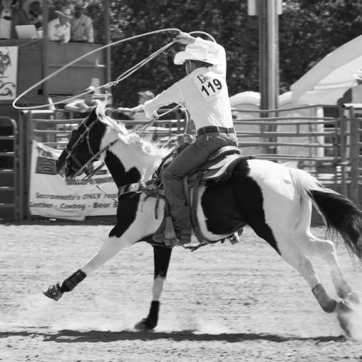 Sacramento_Rodeo (18 of 40)