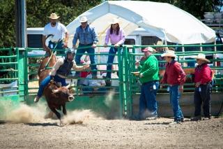 Sacramento_Rodeo (33 of 40)