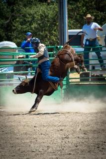 Sacramento_Rodeo (34 of 40)