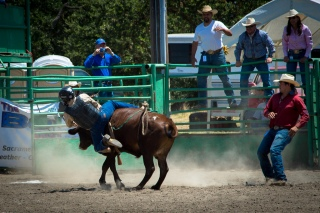Sacramento_Rodeo (35 of 40)