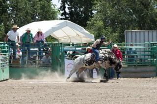 Sacramento_Rodeo (36 of 40)