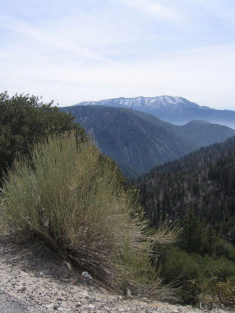 San Bernardino Mountains - 3