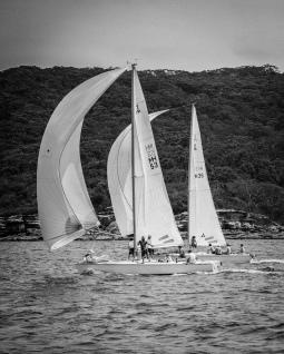 Sydney 145