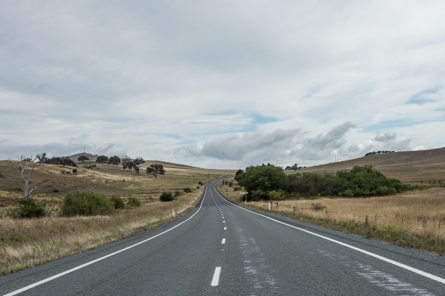 back_to_sydney-2