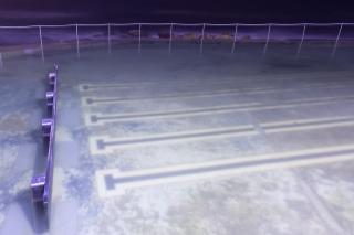 bronte_pools-1