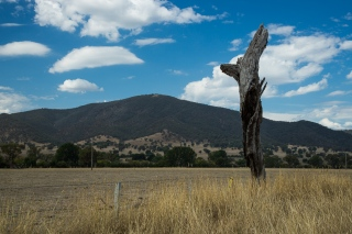 out_to_cooma-6