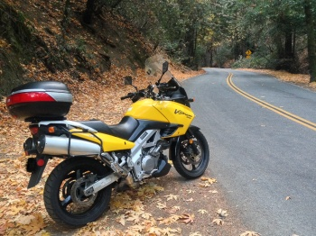 A rider greets autumn
