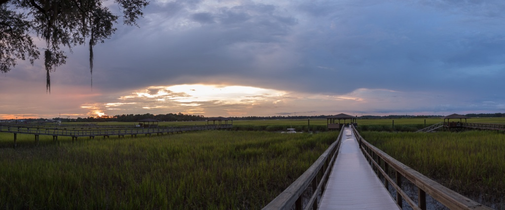 Savannah-1309-Pano