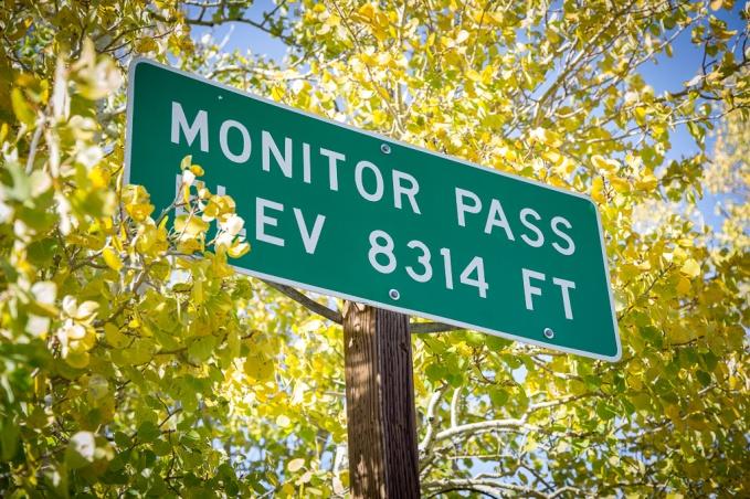 monitor_pass-202